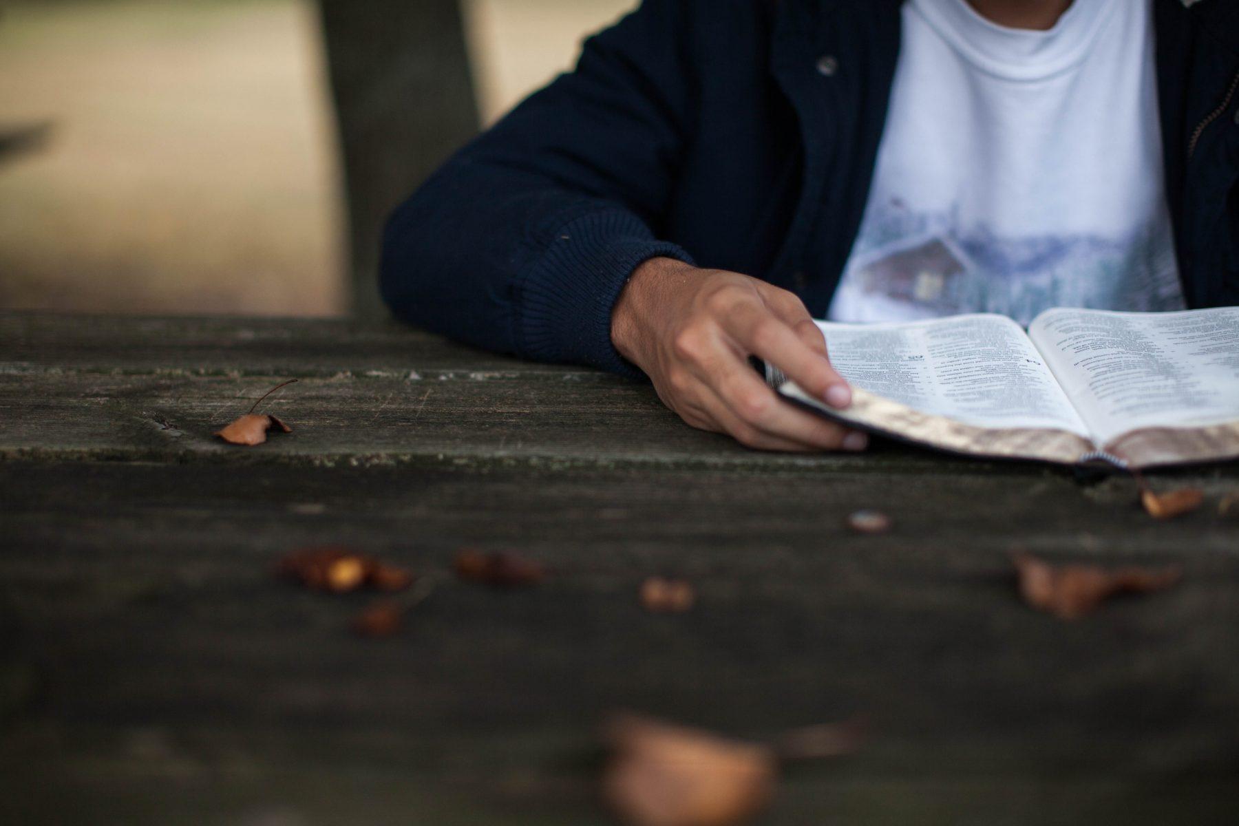 homem leitura desenvolvendo